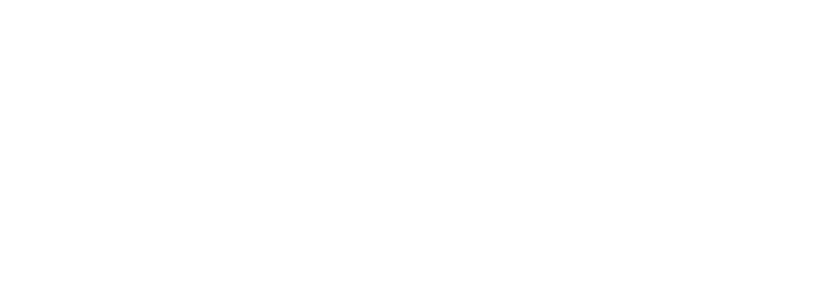 Auranex logo azienda